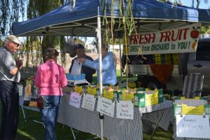 Corowa Rotary Federation Festival Market - Accommodation Perth