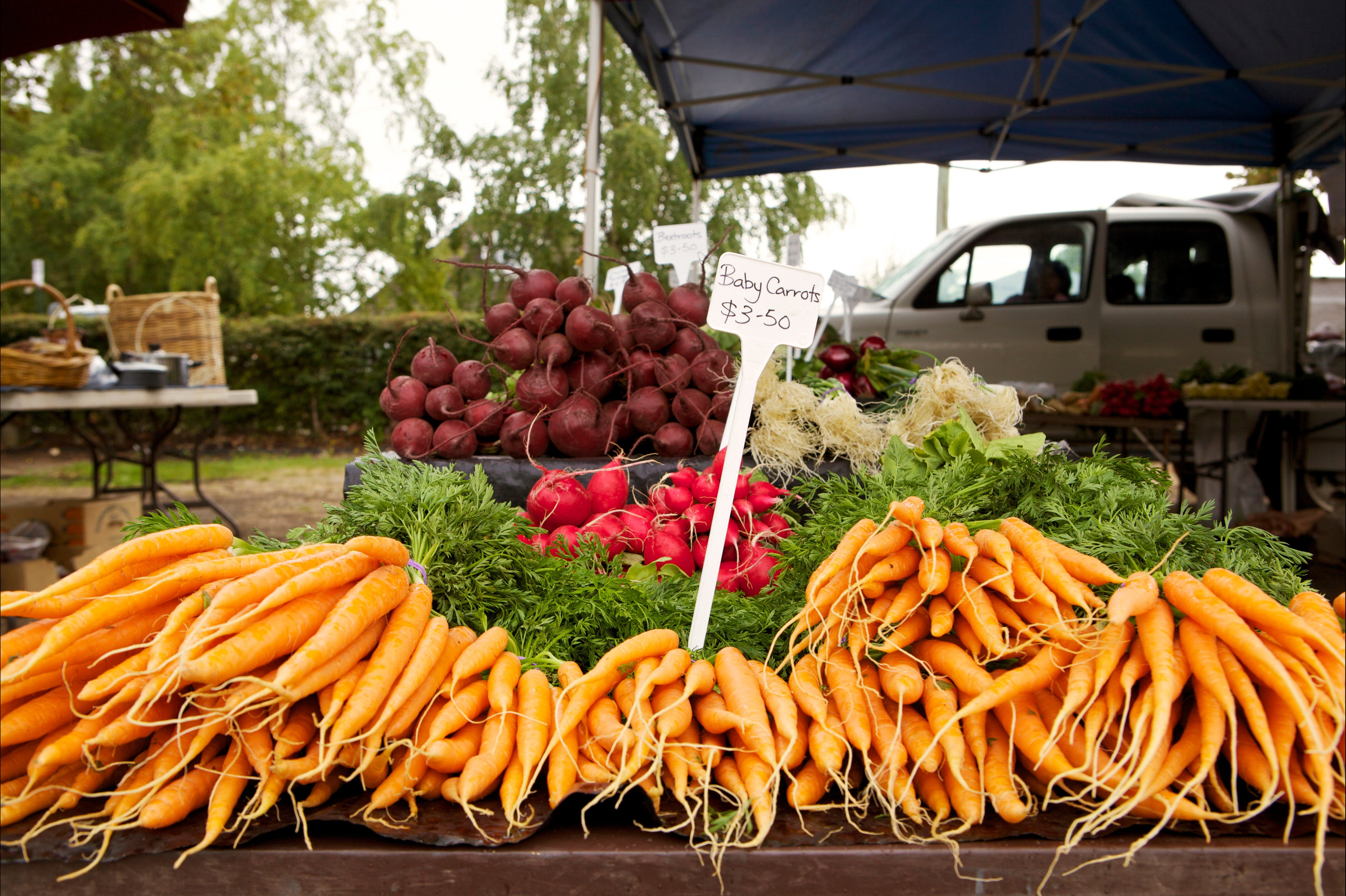 Evandale Market - Weekly - Accommodation Perth