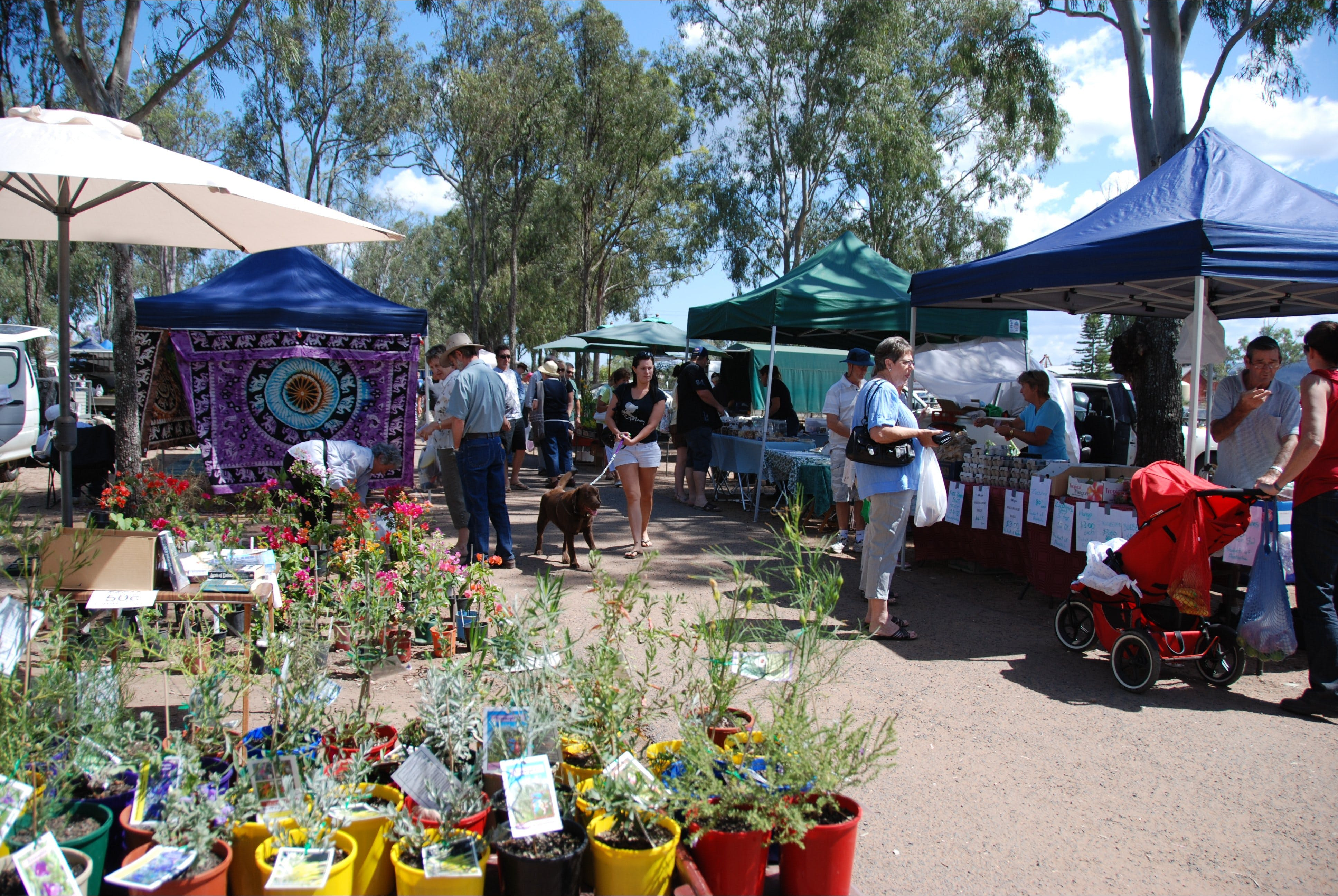 Fernvale Country Markets - Accommodation Perth