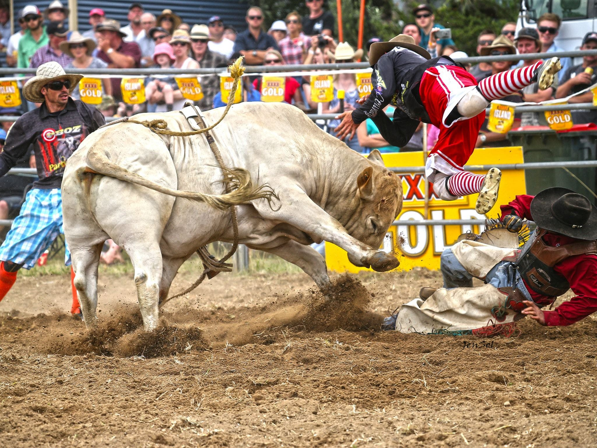 Jindabyne's Man From Snowy River Rodeo - Accommodation Perth