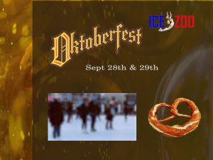 Oktoberfest at Ice Zoo - Accommodation Perth
