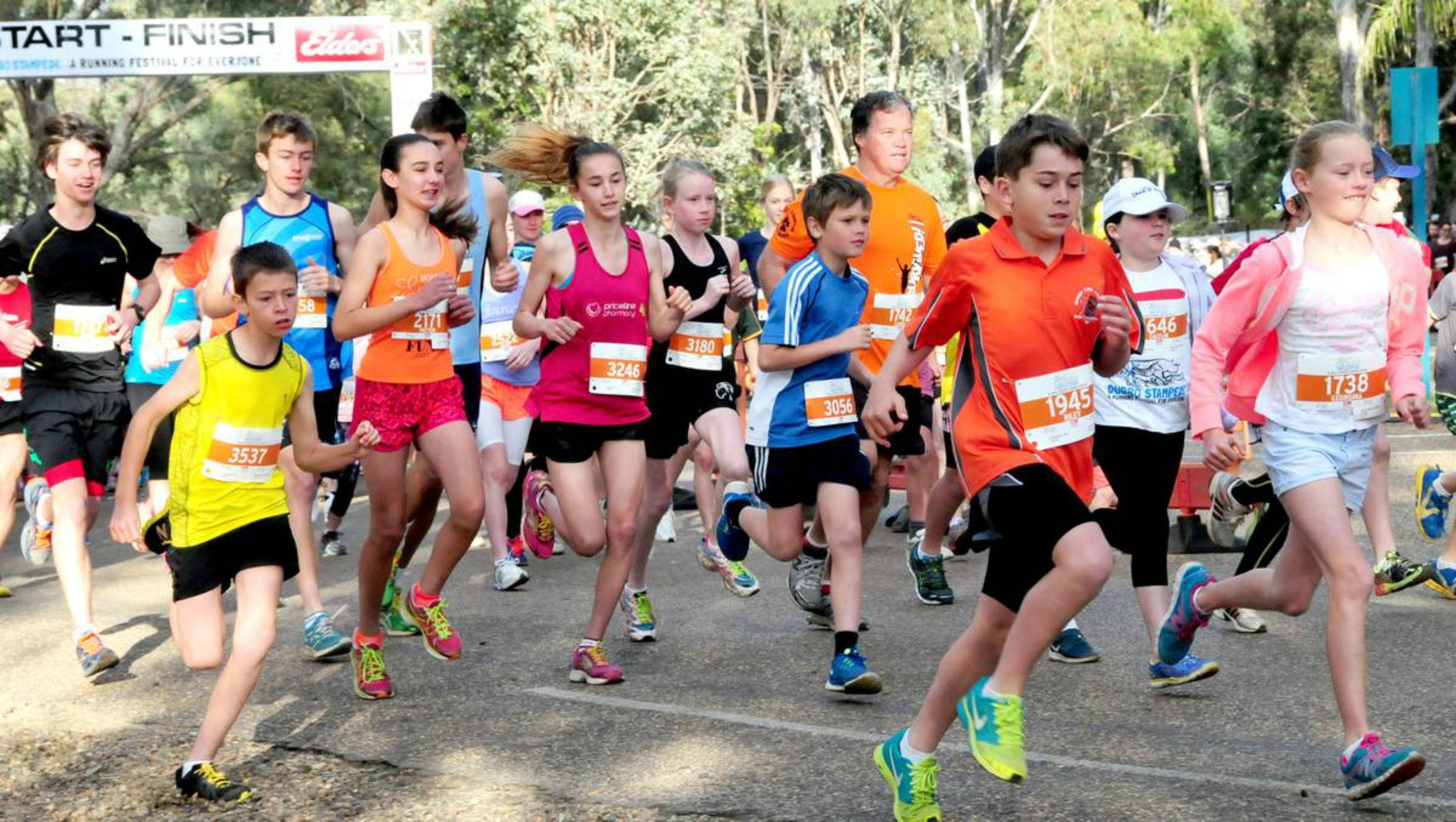 MAAS Group Dubbo Stampede Running Festival - Accommodation Perth