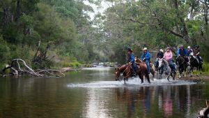 The Man From Snowy River Bush Festival - Accommodation Perth
