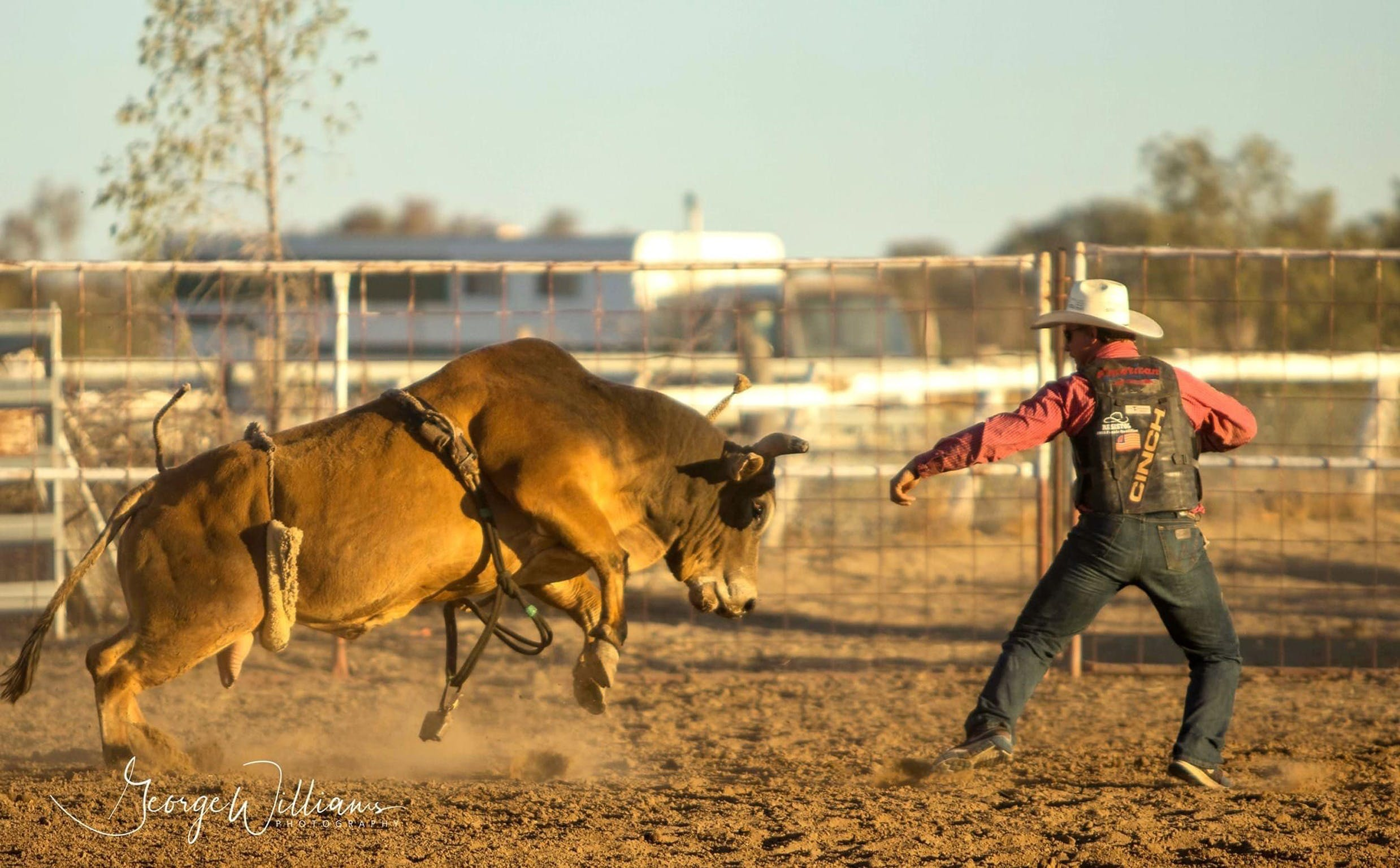 Walgett Charity Bushman's Carnival Rodeo and Campdraft - Accommodation Perth