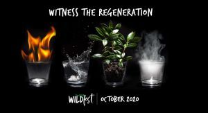 Wildfest - Annual Festival - Accommodation Perth