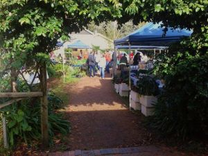Berry Produce Market - Accommodation Perth