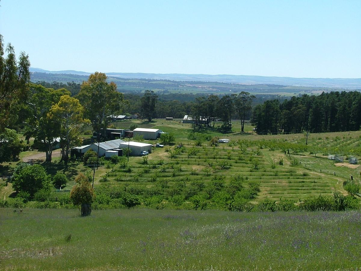 Taralee Orchards - Accommodation Perth