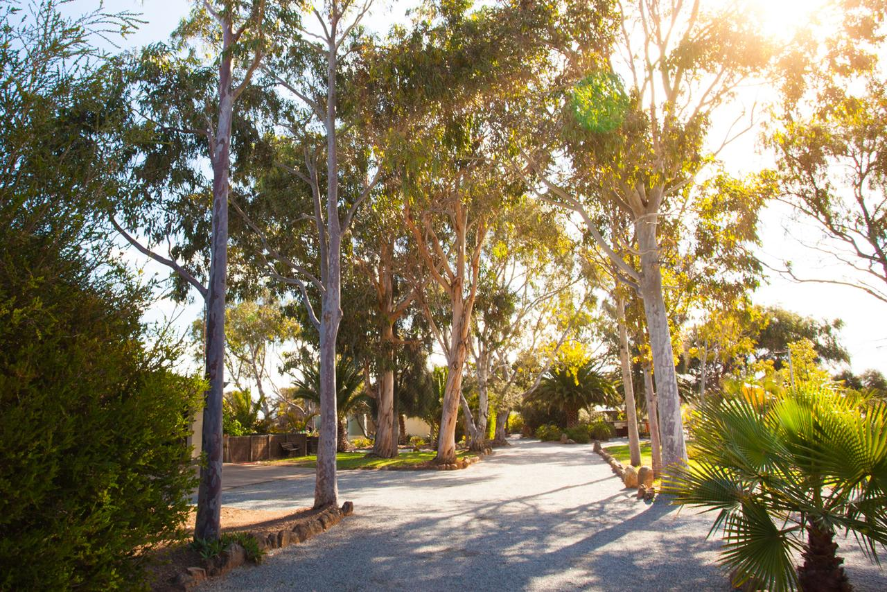 Modra's Apartments - Accommodation Perth