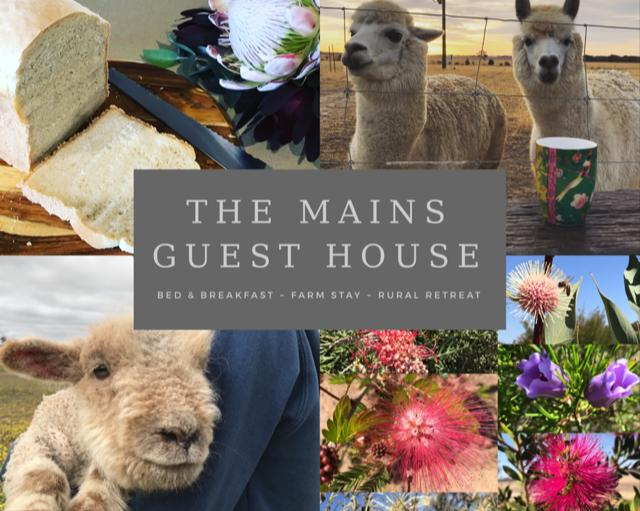 The Mains Guest House - Accommodation Perth