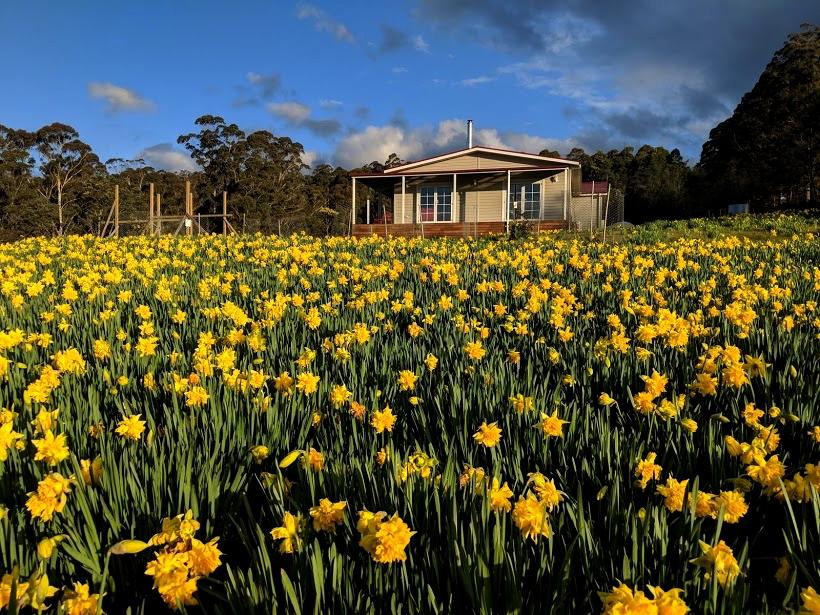 Mountain Blue Guest House - Accommodation Perth