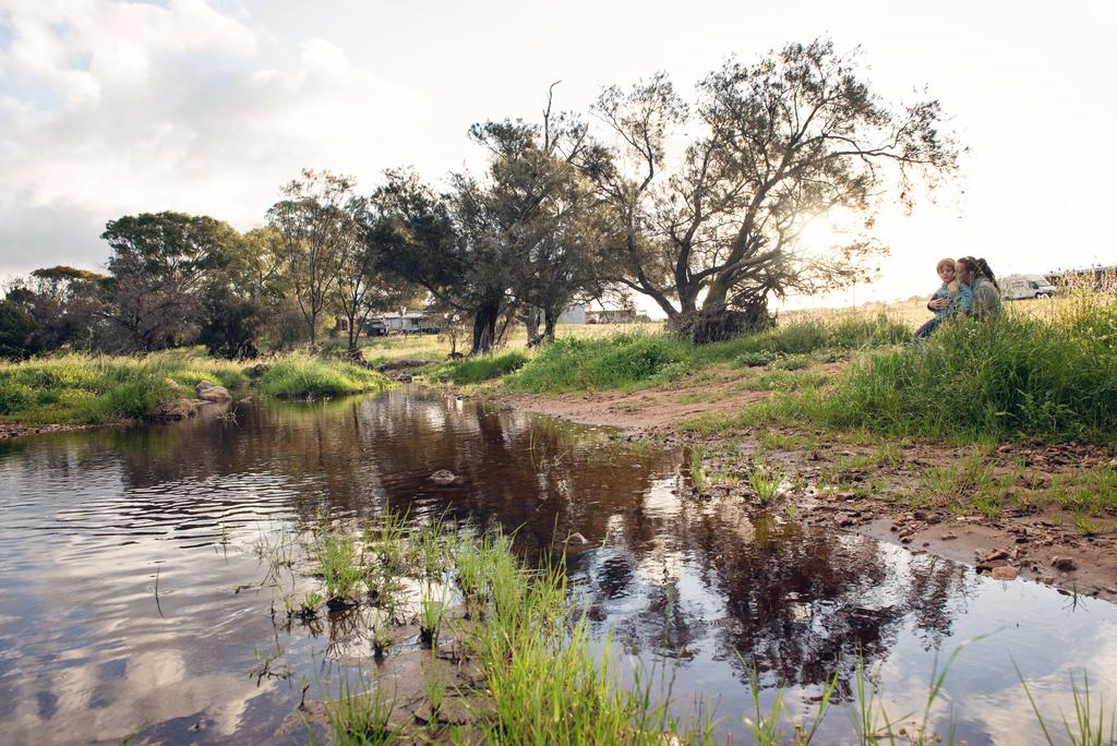 Northbrook Farmstay - Accommodation Perth