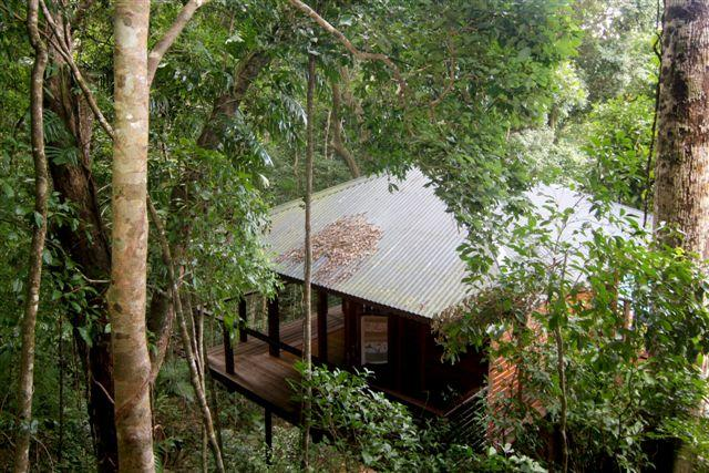 Cairns Reef  Rainforest BB - Accommodation Perth